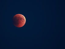 затмение лунное Стоковые Фотографии RF