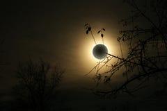 затмение солнечное Стоковая Фотография RF