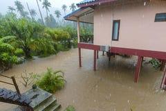 Затопленная улица с пальмами и дом в Koh Phangan острова, Таиланде Стоковая Фотография