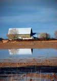 затопленная ферма амбара отраженной Стоковое Изображение