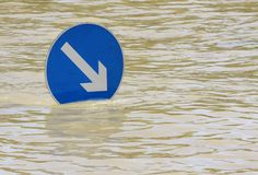 затопленное река Стоковая Фотография
