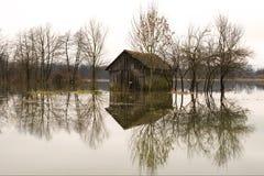 затопленные поля стоковые фото