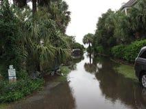 Затопленный путь пляжа Чарлстона Стоковые Изображения RF