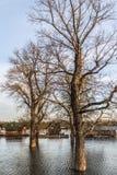 Затопленная земля с плавая домами на Реке Сава - новый Белград - Стоковые Изображения RF