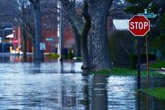 Затопленная улица Стоковые Фотографии RF