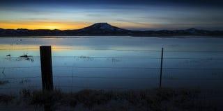 Затопленное поле на заходе солнца с столбом и колючей проволокой загородки Стоковое фото RF