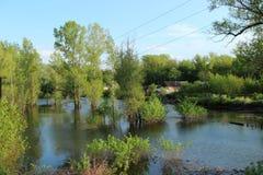 Затопленные дома в потоке Стоковые Изображения RF