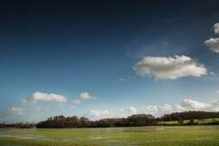 Затопленные поля Стоковая Фотография