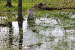 затопленные поля Стоковое фото RF
