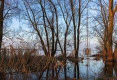 затопленные поля Стоковые Изображения RF