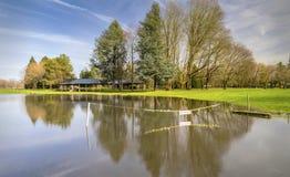 Затопленный злаковик в голубом парке Fairview Орегоне озера Стоковые Изображения