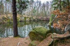 Затопленный каменный карьер в лесе стоковые изображения rf