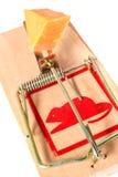 затравленный mousetrap Стоковые Фотографии RF