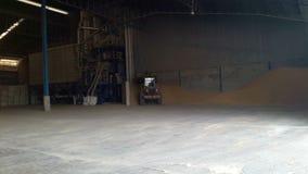 Затяжелители подготавливают зерно акции видеоматериалы