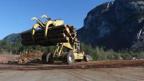 Затяжелитель тимберса регулируя деревянную природу хоботов акции видеоматериалы