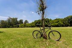 зафиксированный велосипед Стоковые Фотографии RF
