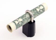 зафиксированный доллар кредитки Стоковые Изображения