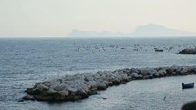 Захватывающие каменистые береговая линия и seascape при шлюпки плавая на воду, каникулы сток-видео