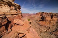 Захватывающий взгляд в национальном парке Canyonlands в Юте Стоковое Изображение RF