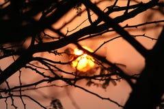 Заходы солнца восходов солнца в океане стоковые изображения