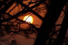 Заходы солнца восходов солнца в океане стоковое изображение