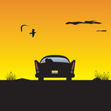 заход солнца автомобиля Стоковое Изображение RF