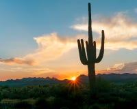 Заход солнца Аризоны Стоковые Фото