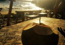 Заход солнца Бали кокоса стоковые фото
