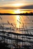 заход солнца берега озера Стоковое Изображение RF