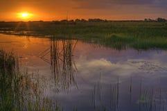 заход солнца болотистых низменностей Стоковая Фотография