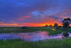 заход солнца болотистых низменностей стоковые фотографии rf