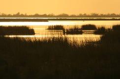 заход солнца болотоа Стоковая Фотография