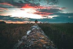 Заход солнца булыжника стоковые изображения rf