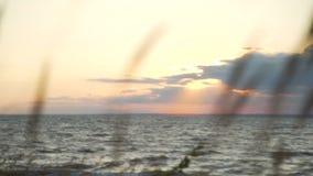 заход солнца ветреный