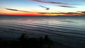 Заход солнца взгляда сверху сверх в океане с пальмой видеоматериал