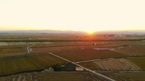 Заход солнца вида с воздуха в полях риса в Валенсии акции видеоматериалы