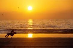 заход солнца всадника лошади пляжа galloping Стоковые Фотографии RF