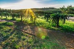 Заход солнца в горах Я вижу красивую задвижку Стоковое Фото