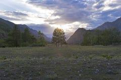 Заход солнца в горах Altai, Сибирь, Россия стоковое изображение rf