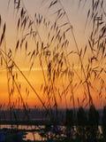 Заход солнца в заливе воды Стоковые Фотографии RF