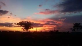 Заход солнца в лете стоковое изображение