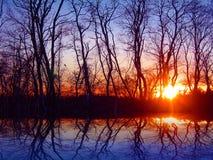 заход солнца в ноябре Стоковая Фотография RF