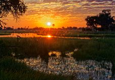 Заход солнца в перепаде Okavango стоковые фото