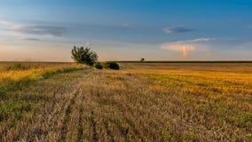 Заход солнца в поле около Varbovchets Стоковая Фотография