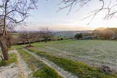 Заход солнца в полях Senigallia стоковое изображение