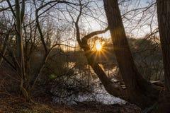 Заход солнца в причаливает стоковое фото rf