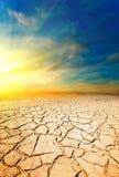 Заход солнца в пустыне стоковое изображение