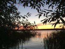 Заход солнца в реке, взгляд из-под дерева стоковые фотографии rf