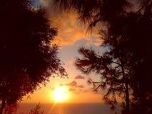 Заход солнца в саде лета Стоковые Фотографии RF