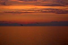 Заход солнца в системе красного карлика стоковые фотографии rf